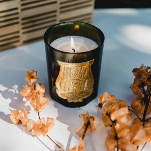 Odalisque Candle by Cire Trudon