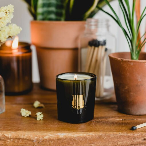 Abd El Kader Scented Candle by Cire Trudon