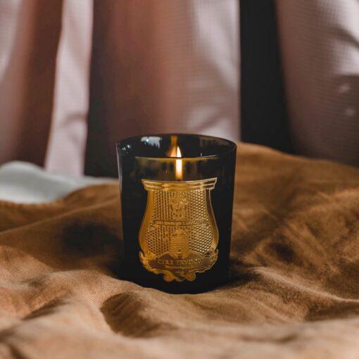 Ernesto Scented Candle by Cire Trudon