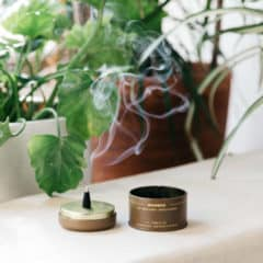 Moonrise Incense Cones by P.F. Candle Co.
