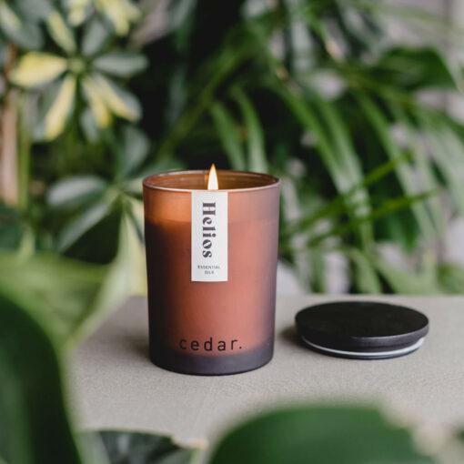 Helios Candle by Cedar