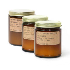 Fall Bundle by P.F. Candle Co.