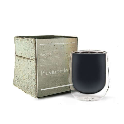 Pluviophile Rain Scented Candle by Haeckels