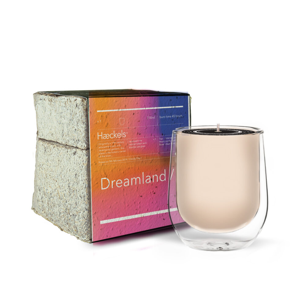 "Dreamland GPS 23' 5""N Scented Candle by Haeckels"