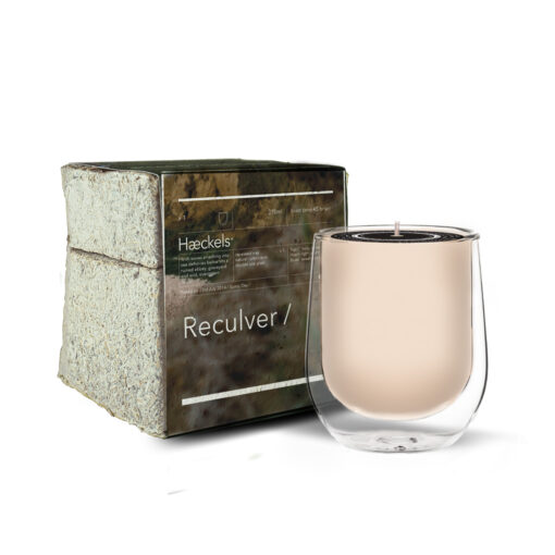 """Reculver GPS 12' 0""""E Scented Candle by Haeckels"""