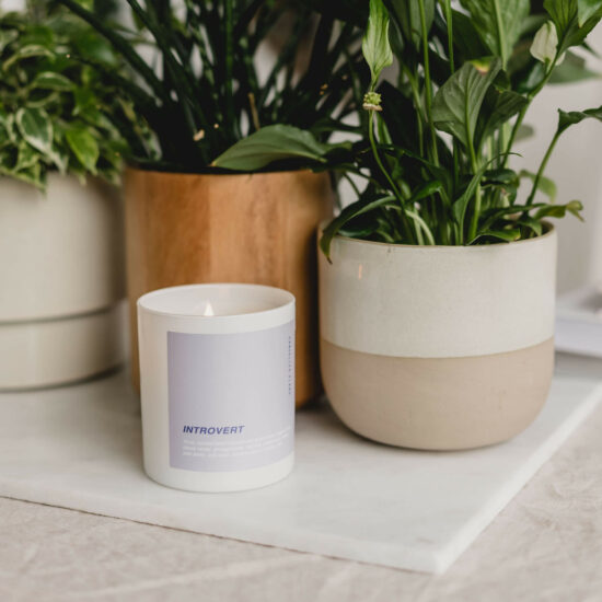 Introvert Scented Candle by Cancelled Plans