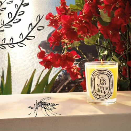 Citronnelle Candle by Diptyque