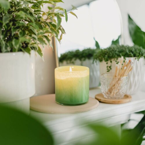 Rosemary Eucalyptus Scented Candle by LAFCO