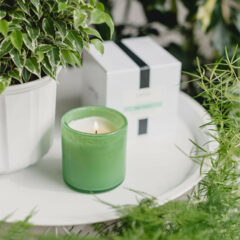 Mint Tisane Candle by LAFCO