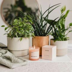 Botanica Candle by R O E N