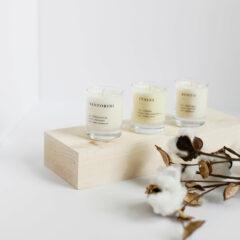 Earthy & Warm Mini Candle Gift Set by Brooklyn Candle Studio