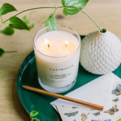 Catskills Candle by Brooklyn Candle Studio